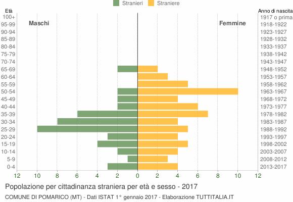 Grafico cittadini stranieri - Pomarico 2017