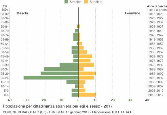 Grafico cittadini stranieri - Badolato 2017