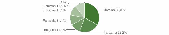 Grafico cittadinanza stranieri - Fabrizia 2007