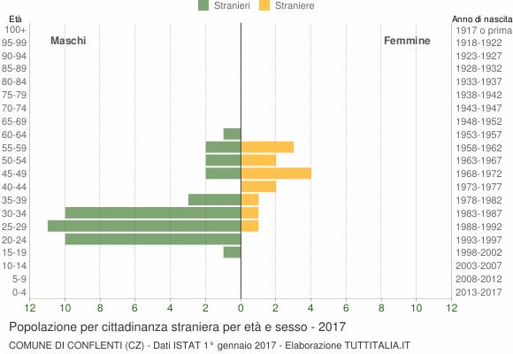 Grafico cittadini stranieri - Conflenti 2017