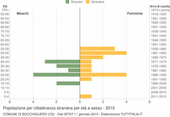Grafico cittadini stranieri - Bocchigliero 2015