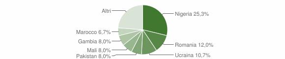 Grafico cittadinanza stranieri - Bivongi 2017