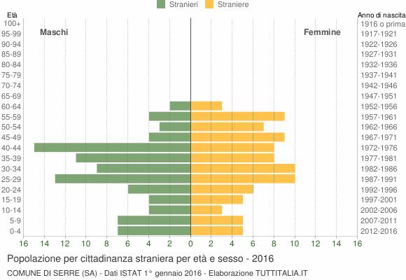 Grafico cittadini stranieri - Serre 2016