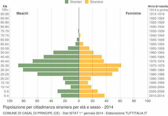 Grafico cittadini stranieri - Casal di Principe 2014