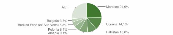 Grafico cittadinanza stranieri - Succivo 2017