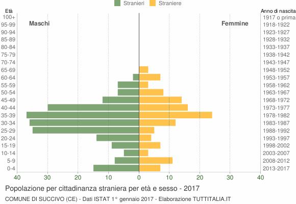 Grafico cittadini stranieri - Succivo 2017