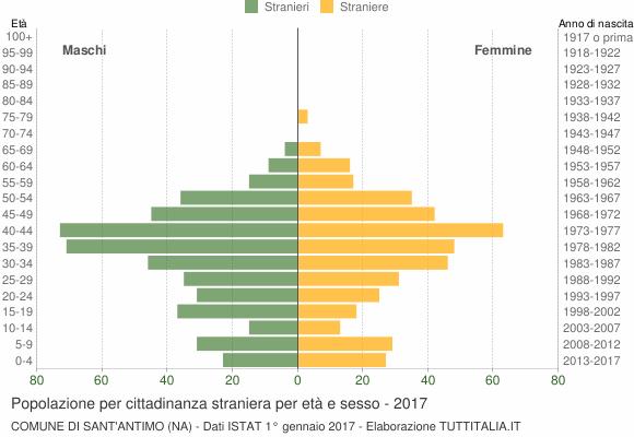 Grafico cittadini stranieri - Sant'Antimo 2017