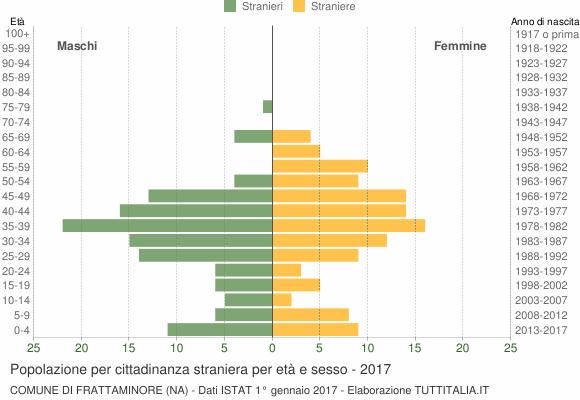 Grafico cittadini stranieri - Frattaminore 2017