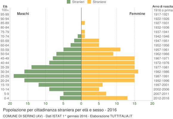 Grafico cittadini stranieri - Serino 2016