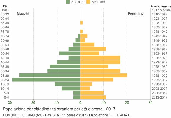 Grafico cittadini stranieri - Serino 2017