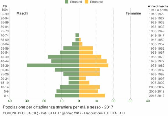 Grafico cittadini stranieri - Cesa 2017