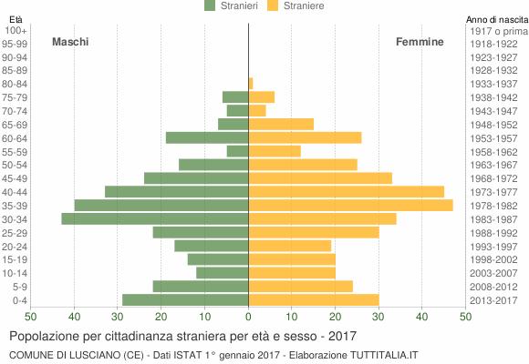 Grafico cittadini stranieri - Lusciano 2017