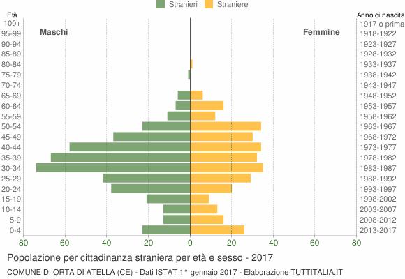 Grafico cittadini stranieri - Orta di Atella 2017