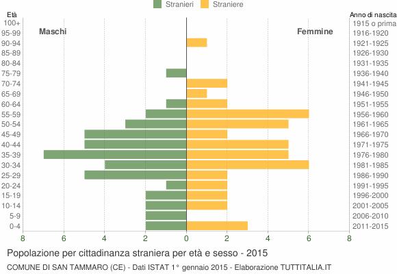 Grafico cittadini stranieri - San Tammaro 2015