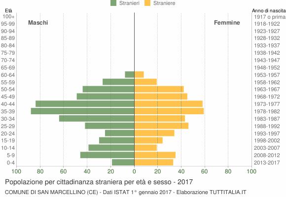 Grafico cittadini stranieri - San Marcellino 2017