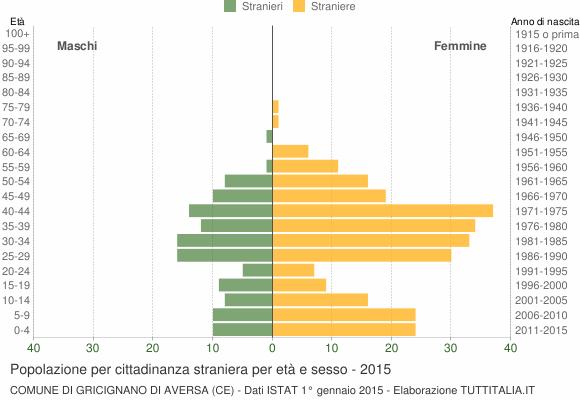 Grafico cittadini stranieri - Gricignano di Aversa 2015