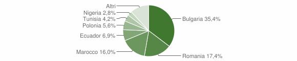 Grafico cittadinanza stranieri - Montiano 2015