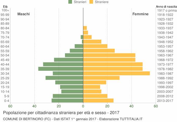 Grafico cittadini stranieri - Bertinoro 2017