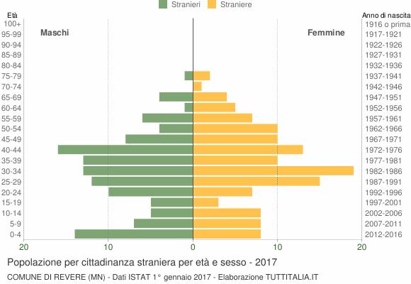 Grafico cittadini stranieri - Revere 2017