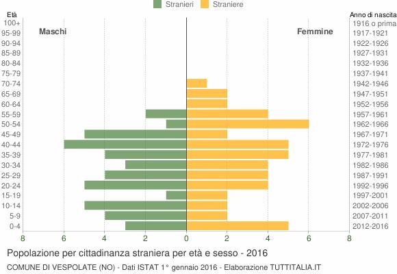 Grafico cittadini stranieri - Vespolate 2016