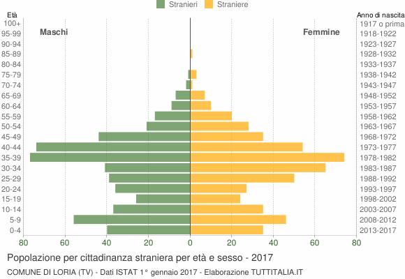 Grafico cittadini stranieri - Loria 2017