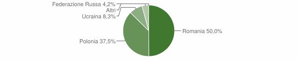 Grafico cittadinanza stranieri - San Chirico Raparo 2009