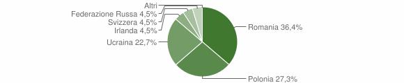 Grafico cittadinanza stranieri - Armento 2010