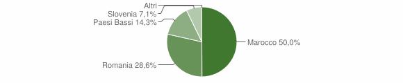 Grafico cittadinanza stranieri - Calciano 2009