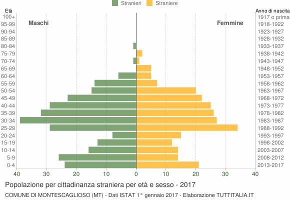 Grafico cittadini stranieri - Montescaglioso 2017