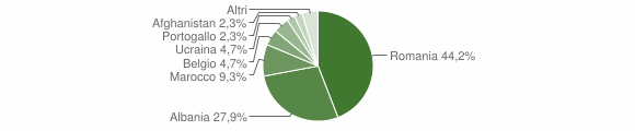 Grafico cittadinanza stranieri - Salandra 2010