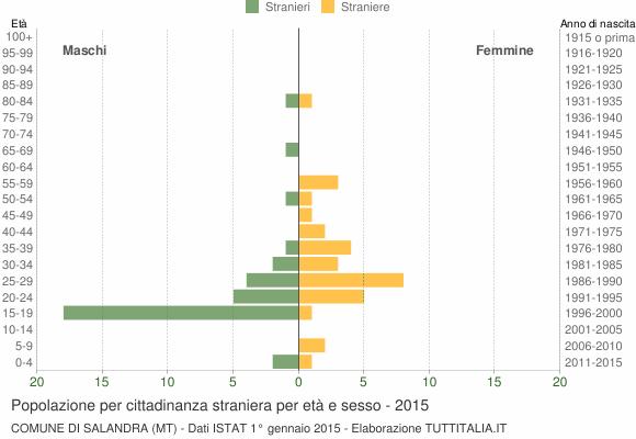 Grafico cittadini stranieri - Salandra 2015