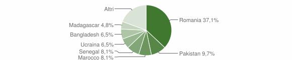 Grafico cittadinanza stranieri - Viggianello 2019
