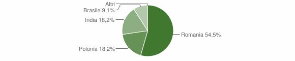 Grafico cittadinanza stranieri - San Chirico Nuovo 2009