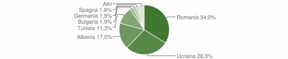 Grafico cittadinanza stranieri - Rapolla 2009