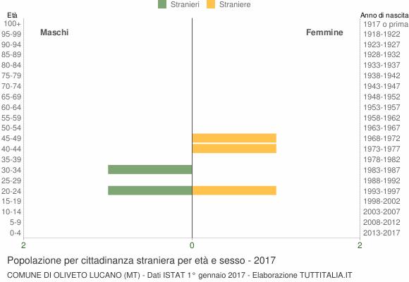 Grafico cittadini stranieri - Oliveto Lucano 2017