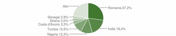 Grafico cittadinanza stranieri - Irsina 2018