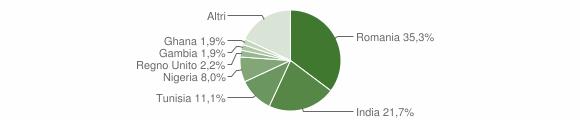 Grafico cittadinanza stranieri - Irsina 2019