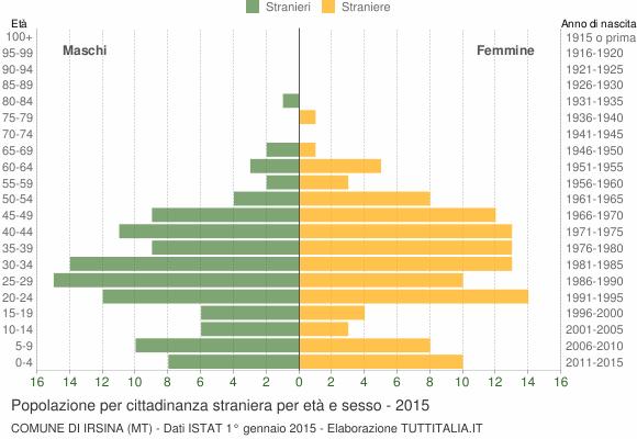 Grafico cittadini stranieri - Irsina 2015
