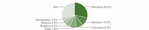Grafico cittadinanza stranieri - Tricarico 2019