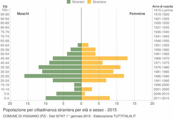 Grafico cittadini stranieri - Viggiano 2015