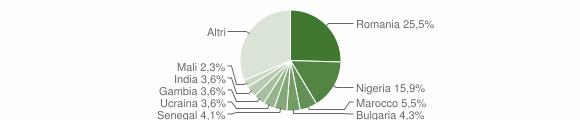 Grafico cittadinanza stranieri - Potenza 2019