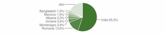 Grafico cittadinanza stranieri - Brancaleone 2019