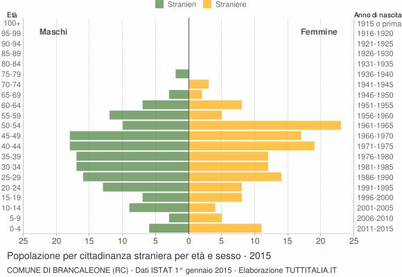 Grafico cittadini stranieri - Brancaleone 2015
