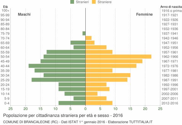 Grafico cittadini stranieri - Brancaleone 2016