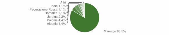 Grafico cittadinanza stranieri - Stefanaconi 2007