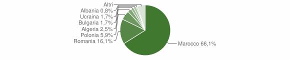 Grafico cittadinanza stranieri - Stefanaconi 2009