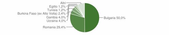 Grafico cittadinanza stranieri - Oppido Mamertina 2019