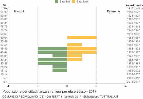 Grafico cittadini stranieri - Pedivigliano 2017