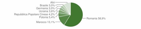 Grafico cittadinanza stranieri - Rose 2017