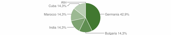 Grafico cittadinanza stranieri - San Luca 2009